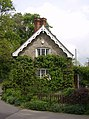 Hairy house at Drive End, Melbury Osmond - geograph.org.uk - 438369.jpg