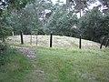 Hamont - Achel - Haarterheide - grafheuvel.jpg