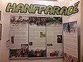 Hanfmuseum-berlin-sonderausstellungen.jpg