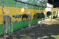 Hanging Plants - House Plant Show - Agri-Horticultural Society of India - Alipore - Kolkata 2013-11-10 4526.JPG