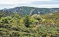 Haut-Languedoc- May 2020.jpg