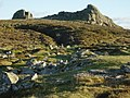 Haytor Rocks from the north - geograph.org.uk - 64375.jpg