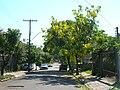 Henrique golland trindade rua porto alegre.JPG