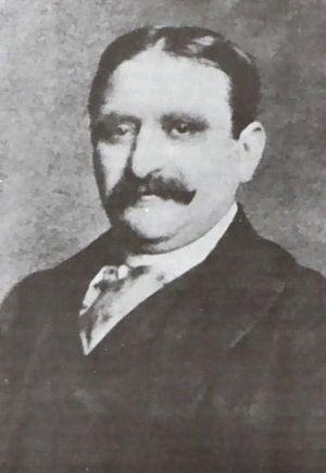 Henry J. Duveen - Image: Henry J. Duveen 1854 1919