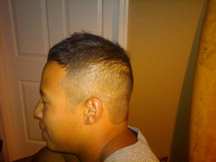 High And Tight Wikiwand