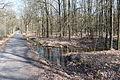 Hildener Heide 2016 088.jpg