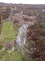 Hill O' Many Stanes - geograph.org.uk - 416740.jpg