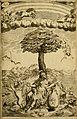 Historie di Faenza (1675) (14774972091).jpg