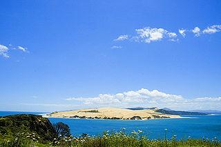 Te Roroa Māori iwi (tribe) in Aotearoa New Zealand
