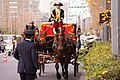 Horse-drawn carriages at the Ceremony of the Presentation of Credentials 20121221.jpg