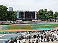 Horse racing @ Tokyo Race Course @ Fuchu (14117880522).jpg