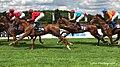 Horserace (229023187).jpeg
