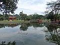 Hpa Yar Gyi Ward, Yangon, Myanmar (Burma) - panoramio (5).jpg