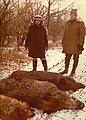 IICCR N155 Ceausescu hunting boars.jpg