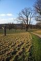 Ickworth Park - geograph.org.uk - 1094662.jpg