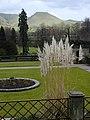Ilam Hall gardens.jpg