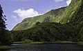 Ilha das Flores P5270229 (35621080520).jpg