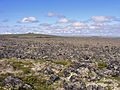 Imuruk Volcanic Field Volcanes edit (16085801418).jpg