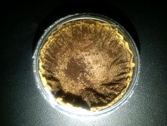 Keurig - The inside of a used K-Cup pod, with the top foil and the used coffee grounds removed, revealing the filter