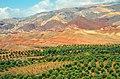 Iran - Manjil - Gilvan - Joudaki - panoramio.jpg