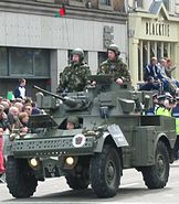 Irish AML-20