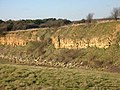 Ironstone Quarry Face - geograph.org.uk - 120209.jpg