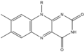 Isoalloxazine Structure.png