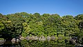 Japanese garden scenery at Expo Commemoration Park 2015-06-04 crop.jpg