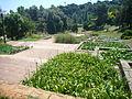 Jardins de Mossèn Cinto Verdaguer 16.JPG