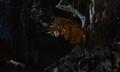Jason and the Argonauts (1963) Golden fleece.png