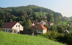 Javor Slovenia.JPG