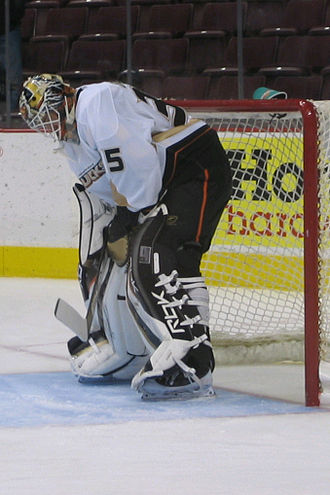 Jean-Sébastien Giguère - Giguère in action with the Ducks in November 2006.