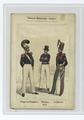 Königlich Belgiche Armee. Sappeur-Pompier; Marine; Artillerie. 1842 (NYPL b14896507-86036).tiff