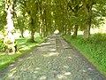 Kąpielowa street (to city) - panoramio (1).jpg