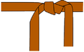 Karate belt brown.png