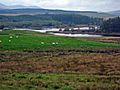 Kendoon Loch - geograph.org.uk - 267154.jpg
