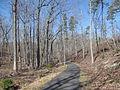 Kings Mountain National Military Park - South Carolina (8557768903) (2).jpg