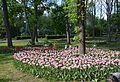 Kirovograd Dendropark 18 (YDS 4198).JPG