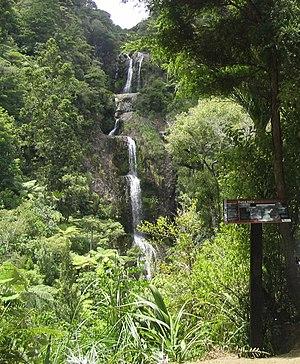 Piha - Kitekite Falls