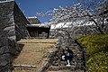 Kofu Castle 201904m.jpg