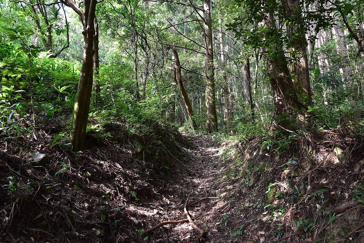 Kogakunomichi Road.jpg