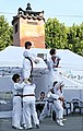 Korea Insadon Taekwondo 10 (7877455268).jpg