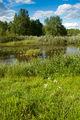 Kovajärvi.jpg