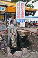 Kussharoko Teshikaga Hokkaido Japan07n.jpg