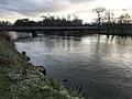 L'Yonne (rivière) à Vincelottes (Yonne, France) - 2.JPG