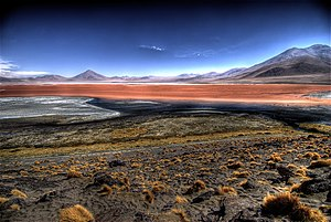 Central Andean dry puna - Image: Laguna Colorada en Bolivia