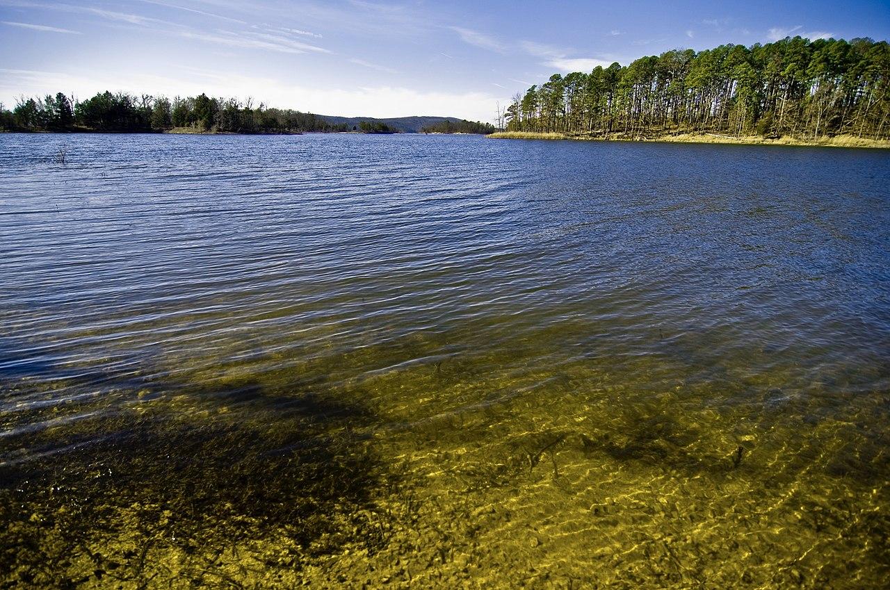 file lake in the ouachita national forest  arkansas jpg