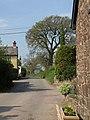 Lane, Pennymoor - geograph.org.uk - 2405196.jpg