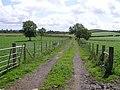 Lane at Tullyreagh - geograph.org.uk - 877301.jpg