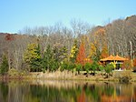 Lasdon Park and Arboretum, Somers, NY - IMG 1443.jpg